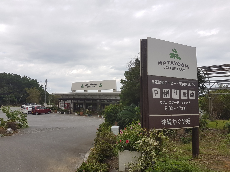 Matayoshi咖啡農場.jpg